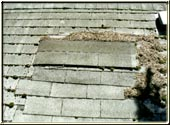 Repairs completed correctly make all of the difference for your roof