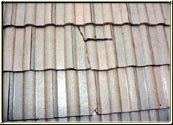 This 39 year old tile roof was cleaned showing damage that was covered by moss and debris